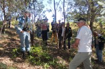 Field day at Neville Anderson's property (Member), Neville discussing aspects of keeping native stingless bees.
